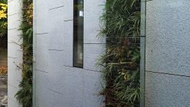Vegetationswand in Fassade-BIAUS-HSB-MM-090015300000-140930-04