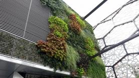 Vegetationswand-BIAUS-HSB-MM-130020000000-140723-09